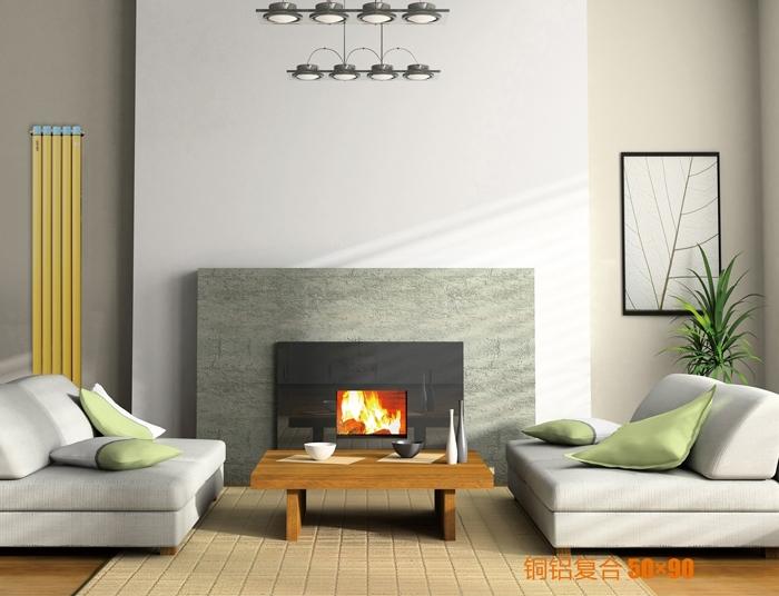 铜铝复合散热器 50×90
